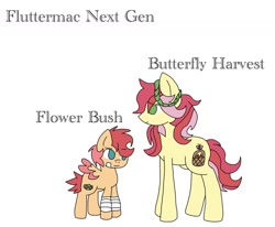 Size: 1436x1184 | Tagged: safe, artist:analyia09, oc, oc:butterly harvest, oc:flower bush, earth pony, pegasus, pony, bandaid, brother and sister, female, floral head wreath, flower, foal, male, offspring, parent:big macintosh, parent:fluttershy, parents:fluttermac, siblings, simple background, white background