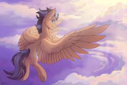 Size: 2551x1701   Tagged: safe, artist:dark lightning, oc, pegasus, pony, cloud, flying, solo