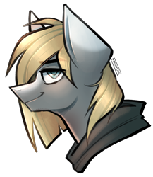 Size: 1892x2182 | Tagged: safe, artist:earthpone, oc, oc only, oc:frigg, earth pony, pony, bust, clothes, female, hoodie, mare, portrait, simple background, smug, solo, transparent background
