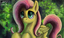 Size: 854x512 | Tagged: safe, artist:dreamyskies, fluttershy, complex background, cute, female, innocent, looking up, mare, shy, wings