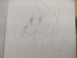 Size: 4000x3000 | Tagged: safe, artist:barpy, oc, oc only, earth pony, pony, bust, fluffy, looking at you, portrait, simple background, sketch, solo, traditional art