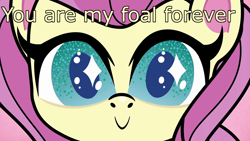 Size: 1920x1080 | Tagged: safe, edit, edited screencap, screencap, fluttershy, pegasus, pony, my little pony: pony life, the trail less trotten, spoiler:pony life s01e07, caption, cute, giantshy, image macro, shyabetes, solo, starry eyes, text, wingding eyes