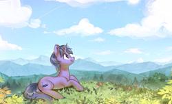 Size: 3326x2021 | Tagged: safe, artist:mirroredsea, oc, oc:geekbrony, oc:techno drift, pony, unicorn, cloud, cloudy, commission, nature, photo, scenery, sky, solo