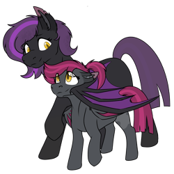 Size: 1839x1836 | Tagged: safe, artist:rokosmith26, oc, oc only, oc:lunier constantine, oc:midnight taffy, bat pony, pony, duo, duo female, ear fluff, female, filly, folded wings, holding, lifted leg, looking at each other, mare, ponytail, short hair, short mane, simple background, transparent background, wings