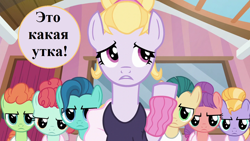Size: 1280x720   Tagged: safe, edit, edited screencap, screencap, ballet jubilee, berry star, hoofer steps, shining passion, shuffle step, strawberry swing, waltzer, on your marks, cyrillic, op is a duck (reaction image), reaction image, russian, speech, speech bubble, talking, translated in the description