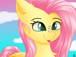 Size: 1600x1200 | Tagged: safe, artist:monsoonvisionz, angel bunny, fluttershy, pegasus, pony, rabbit, animal, bust, chest fluff, cloud, commission, cross-eyed, duo, ear fluff, exclamation point, female, folded wings, freckles, interrobang, looking at someone, macro, mare, outdoors, question mark, sitting, sitting on nose, sky, smiling, three quarter view, tongue out, wings