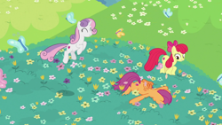 Size: 1920x1080 | Tagged: safe, screencap, apple bloom, scootaloo, sweetie belle, butterfly, growing up is hard to do, cutie mark crusaders, older