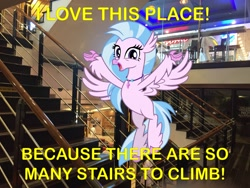 Size: 3264x2448 | Tagged: safe, artist:cheezedoodle96, artist:topsangtheman, silverstream, hippogriff, pony, caption, happy, irl, looking at you, meme, photo, ponies in real life, spa castle, stairs, that hippogriff sure does love stairs