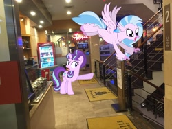 Size: 3264x2448 | Tagged: safe, artist:cheezedoodle96, artist:topsangtheman, silverstream, starlight glimmer, hippogriff, pony, unicorn, irl, photo, pointing, ponies in real life, spa castle, stairs, that hippogriff sure does love stairs