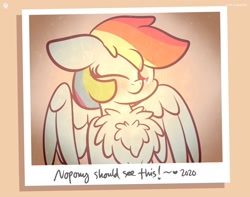 Size: 1920x1513 | Tagged: safe, artist:kimjoman, rainbow dash, pegasus, pony, 2020, blushing, chest fluff, colored pupils, cute, dashabetes, female, floppy ears, fluffy, heart, looking at you, mare, one eye closed, photo, polaroid, smiling, solo, spread wings, text, wings, wink