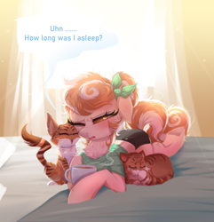 Size: 1720x1786 | Tagged: safe, artist:ravensunart, oc, oc only, oc:cinnamon spangled, cat, earth pony, pony, alternate hairstyle, backlit, bed, bedroom, blushing, bow, breakfast in bed, clothes, coffee, curtains, female, furrowed brow, mare, messy mane, pajamas, shirt, shorts, solo, squint, t-shirt, underhoof, window