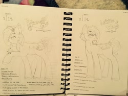 Size: 4032x3024 | Tagged: safe, artist:heyltsblaze, oc, oc only, oc:little wing, oc:primrose, pegasus, pony, brother and sister, duo, female, male, mare, offspring, parent:big macintosh, parent:fluttershy, parents:fluttermac, pencil drawing, siblings, sketch, stallion, traditional art