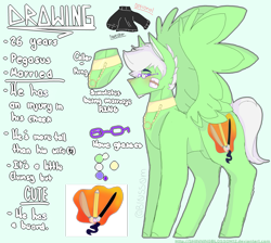 Size: 2589x2316   Tagged: safe, artist:shinningblossom12, oc, oc only, oc:drawing, pegasus, pony, blushing, choker, clothes, glasses, jewelry, male, necklace, pegasus oc, reference sheet, solo, stallion, wings