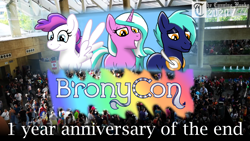 Size: 2560x1440 | Tagged: safe, artist:mrchaosthecunningwlf, artist:ponyvillechaos577, oc, oc:blank canvas, oc:hoof beatz, oc:mane event, earth pony, pegasus, pony, unicorn, bronycon, bronycon 2019, bronycon mascots, photo, thumbnail, video link in description, youtube link, youtube thumbnail