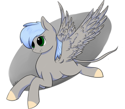 Size: 1600x1400 | Tagged: safe, artist:intfighter, oc, oc only, pegasus, pony, colored hooves, leonine tail, pegasus oc, simple background, solo, transparent background, wings