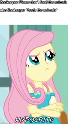 Size: 500x914 | Tagged: safe, edit, edited screencap, screencap, fluttershy, a little birdie told me, equestria girls, equestria girls series, caption, image macro, imgflip, solo, text