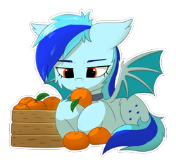 Size: 1905x1801 | Tagged: safe, artist:keupoz, oc, oc only, oc:hoers, bat pony, pony, bat pony oc, bat wings, box, collar, commission, food, fruit, munching, orange, outline, simple background, transparent background, wings