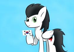 Size: 2048x1447 | Tagged: artist needed, safe, oc, oc only, oc:skysprinter, cute, flag, korean, simple