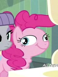 Size: 355x472 | Tagged: safe, screencap, maud pie, pinkie pie, maud pie (episode), ponk