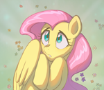 Size: 1892x1650   Tagged: safe, artist:anonymous, derpibooru exclusive, fluttershy, pegasus, bust, cute, female, flower, green background, hiding behind wing, looking up, mare, palindrome get, portrait, shy, shyabetes, simple background, solo, wings