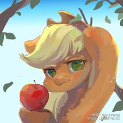 Size: 2008x2008 | Tagged: safe, artist:小huhu狸君呀, applejack, earth pony, apple, applejack's hat, branches, cowboy hat, female, food, hat, looking at you, mare, solo, that pony sure does love apples