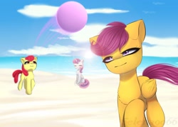 Size: 1920x1365   Tagged: safe, artist:selena9966, apple bloom, scootaloo, sweetie belle, pony, ball, beach, cutie mark crusaders