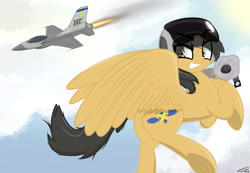 Size: 6500x4500 | Tagged: safe, artist:flywheel, oc, oc:crisom chin, pegasus, commission, flying, jet, jet fighter