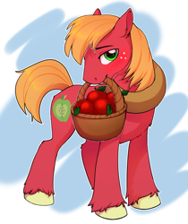 Size: 2289x2723 | Tagged: source needed, safe, artist:kyotoleopard, big macintosh, earth pony, pony, apple, basket, colored hooves, cutie mark, digital art, food, looking at you, male, mouth hold, solo, stallion, tail, unshorn fetlocks