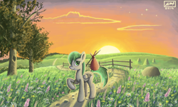 Size: 854x512 | Tagged: safe, artist:dreamyskies, oc, oc only, oc:dreamer skies, pegasus, pony, 3ds, backstory in the comments, beautiful, cloud, fence, field, flower, folded wings, home, hope, looking at you, male, outdoors, peaceful, pegasus oc, scenery, scenery porn, signature, sky, smiling, solo, stallion, stars, sunrise, travelling, tree, wings