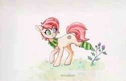 Size: 3100x2011 | Tagged: safe, artist:cloudupart, oc, oc only, oc:rusty gears, earth pony, clothes, female, heterochromia, plant, scarf, sock, socks, solo, striped socks, stuck