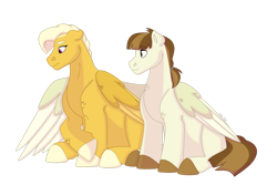 Size: 1280x854 | Tagged: safe, artist:itstechtock, featherweight, oc, oc:meadowlark, pegasus, pony, offspring, older, parent:bulk biceps, parent:fluttershy, parents:flutterbulk, simple background, transparent background