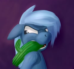 Size: 1024x946   Tagged: safe, artist:sokolas, oc, oc only, earth pony, pony, biting, cactus, chewing cactus, frustrated, male, solo, teeth