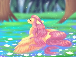 Size: 1024x768   Tagged: safe, artist:malinraf1615, fluttershy, pegasus, pony, alternate hairstyle, beautiful, blushing, chest fluff, cute, eyes closed, female, grass, leaf, lilypad, mare, river, shyabetes, solo, tree, water