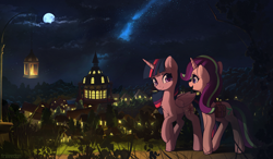 Size: 3423x2000 | Tagged: safe, artist:freeedon, starlight glimmer, twilight sparkle, alicorn, pony, unicorn, chest fluff, commission, duo, female, lantern, looking at each other, mare, moon, night, ponyville, ponyville town hall, scenery, smiling, stars, twilight sparkle (alicorn), walking