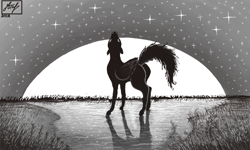 Size: 854x512 | Tagged: safe, artist:dreamyskies, oc, oc only, oc:dreamer skies, pegasus, pony, alone, detailed, detailed background, grass, grayscale, lonely, looking up, male, monochrome, moon, pegasus oc, pony oc, romantic, signature, single, solo, stallion, standing, stargazing, stars, wings