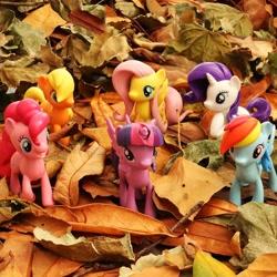 Size: 1080x1080 | Tagged: safe, applejack, fluttershy, pinkie pie, rainbow dash, rarity, twilight sparkle, pony, autumn, instagram, leaves, mane six, merchandise, official, photo