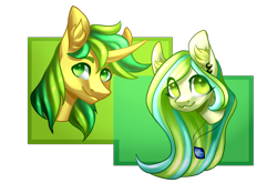 Size: 2000x1393 | Tagged: safe, artist:helemaranth, oc, oc only, earth pony, pony, unicorn, commission, duo, ear fluff, ear piercing, earring, earth pony oc, horn, jewelry, necklace, piercing, simple background, smiling, transparent background, unicorn oc, ych result