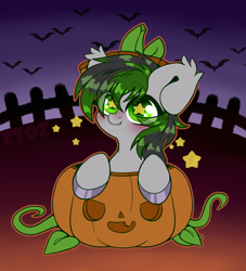 Size: 2000x2200 | Tagged: safe, artist:etoz, oc, oc only, bat, bat pony, pony, bat pony oc, bat wings, blushing, chibi, commission, cute, fangs, halloween, holiday, male, pumpkin, smiling, stallion, starry eyes, stars, wingding eyes, wings, ych result