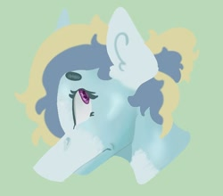 Size: 670x590   Tagged: safe, artist:dellieses, oc, oc only, earth pony, pony, bust, earth pony oc, green background, simple background, solo