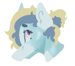 Size: 670x590   Tagged: safe, alternate version, artist:dellieses, oc, oc only, earth pony, pony, background removed, bust, earth pony oc, simple background, solo, white background