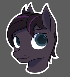 Size: 3083x3378 | Tagged: safe, artist:thehuskylord, oc, pegasus, pony, bust, portrait, shading, simple background, smiling, solo