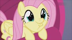 Size: 1280x720 | Tagged: safe, screencap, fluttershy, duck, duck pony, pegasus, sweet and smoky, cute, daaaaaaaaaaaw, duckface, female, shyabetes