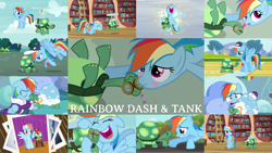 Size: 1280x722 | Tagged: safe, edit, edited screencap, editor:quoterific, screencap, rainbow dash, tank, pegasus, pony, tortoise, just for sidekicks, may the best pet win, tanks for the memories, blushing, female, male, mare