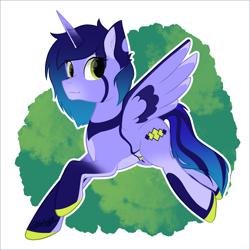 Size: 2500x2500 | Tagged: safe, artist:starlight, pony, commission, fullbody