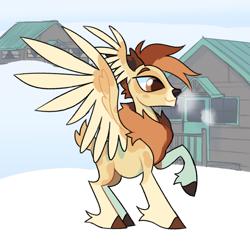 Size: 1500x1500 | Tagged: safe, artist:renhorse, oc, oc:gusty, deer, deer pony, original species, peryton, snow, solo, wing ears