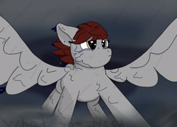 Size: 2100x1500   Tagged: safe, artist:hemlock conium, oc, oc only, pegasus, fanfic:what you need, crying, fanfic art, female, mare, rain, solo, storm