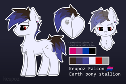 Size: 1536x1024 | Tagged: safe, artist:keupoz, oc, oc only, oc:keupoz, earth pony, pony, bisexual pride flag, butt, cheek fluff, chest fluff, dock, ear piercing, earth pony oc, looking at you, male, piercing, plot, pride, pride flag, rear view, reference sheet, simple background, solo, stallion, text, watermark