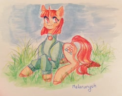 Size: 1600x1261 | Tagged: safe, artist:malarunych, oc, oc only, pony, unicorn, clothes, cutie mark, grass, horn, solo, traditional art, unicorn oc