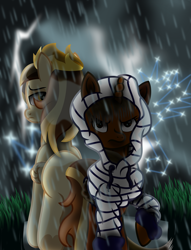 Size: 4848x6348 | Tagged: safe, artist:lincolnbrewsterfan, derpibooru exclusive, oc, oc only, oc:nocturnal vision, oc:prince whateverer, alicorn, pegasus, pony, my little pony: the movie, 12115, absurd resolution, alicorn oc, angry, blank flank, butt, clothes, cloud, cloudy, constellation, crown, cute, dark, dark sky, darklight, darkness, determined, determined look, drawstrings, duo, female, folded wings, full color, gem, gemstones, glow, gradient background, grass, hidden eyes, hoodie, inkscape, inspired by a song, inspired by another artist, jewelry, lidded eyes, light and dark, lightning, looking at you, looking back, looking over shoulder, madorable, male, male and female, mare, nc-tv, nc-tv:creator ponified, nocturnal vision's striped hoodie, outdoors, pegasus oc, plot, ponified, rain, raincloud, raised hoof, regalia, road, sad, sadorable, serious, serious face, shadow, shine, shiny, simple background, soaked, stallion, starry night, stars, storm, stormcloud, striped hoodie, thunderstorm, unamused, underhoof, vector, wall of tags, wallpaper, water, wet, wet mane, wing sleeves, wings, youtube link in the description
