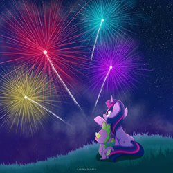 Size: 1024x1024 | Tagged: safe, artist:nnaly, spike, twilight sparkle, dragon, pony, unicorn, female, fireworks, grass, mare, night, signature, stars, unicorn twilight